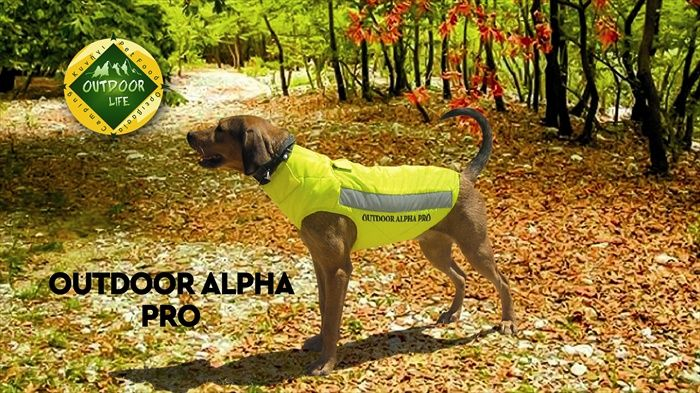 e8f19a9b7 Διάφορα Αξεσουάρ Σκύλων : Γιλέκο προστασίας σκύλων OUTDOOR ALPHA PRO Τ80